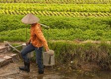 拿着在竹肩膀的女性农夫两充分的watercans举行 库存图片