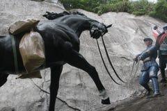 拿着在红军Parkï ¼ Œshenzhen,瓷的战士雕象一匹马 免版税库存照片