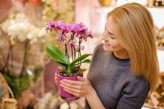 拿着在罐的女孩一朵美丽的桃红色兰花 图库摄影