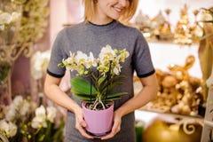 拿着在罐的女孩一朵美丽的白色兰花 免版税库存照片