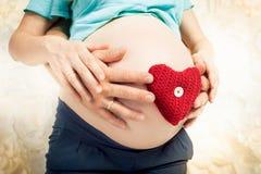 拿着在腹部的有同情心和爱的预期父母红色心脏 图库摄影