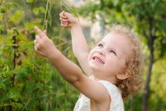 拿着在莓果Bu背景的美丽的卷曲女孩一棵草  免版税库存图片