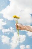 拿着在蓝天的妇女手黄色花 图库摄影