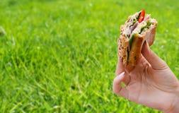 拿着在野餐的人的手一个健康三明治 库存照片
