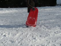 拿着在雪的女孩红色爬犁 免版税库存照片