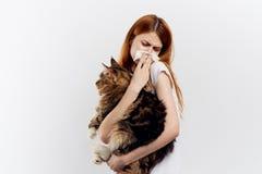 拿着在轻的背景的年轻美丽的妇女一只猫,过敏对动物 库存照片