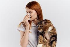 拿着在轻的背景的年轻美丽的妇女一只猫,过敏对宠物 库存图片