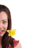 拿着在h的年轻美丽的妇女特写镜头画象黄水仙 库存照片