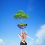 拿着地球上的商人手大树与蓝天,这个图象的元素由美国航空航天局装备 免版税图库摄影