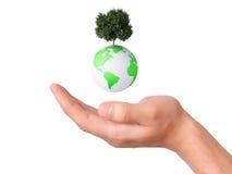 拿着地球地球和树在他的手上 免版税库存照片