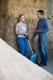 拿着大铁锹的两名年轻农厂工人 库存图片