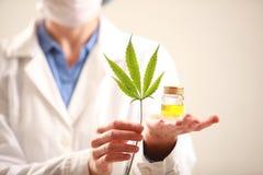 拿着大麻的妇女医生生叶并且上油 替代竹浴biloba银杏树项目医学温泉盘 库存照片