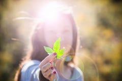 拿着大麻叶子的女孩 免版税库存照片