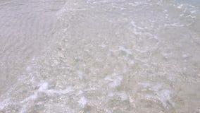 拿着射击,走沿与清楚的海水的海滩 股票录像