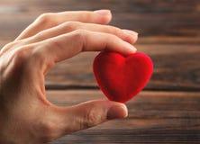 拿着小明亮的红色心脏的手 免版税库存照片