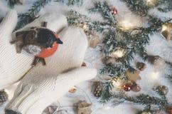 拿着小装饰鸟的庄稼人 图库摄影