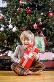拿着少许当前结构树的男孩圣诞节 免版税库存照片