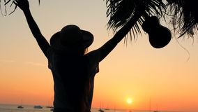 拿着尤克里里琴吉他的无忧无虑的年轻行家妇女在美好的热带海滩日落和身分与伸出 股票视频