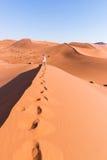 拿着巧妙的电话和拍照片的游人在风景沙丘在Sossusvlei,纳米比亚沙漠, Namib Naukluft国家公园, Namib 库存照片
