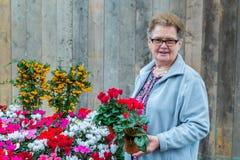 拿着开花植物的资深妇女 免版税库存图片