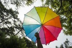 拿着彩虹伞的手 免版税库存照片