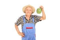 拿着微小的西瓜的成熟农夫 库存照片