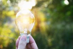 拿着想法的人的手电灯泡或成功或者太阳e 库存图片