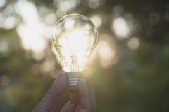 拿着想法的人的手电灯泡或成功或者太阳e 免版税图库摄影