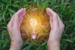 拿着想法的人的手电灯泡或成功或者太阳e 免版税库存图片