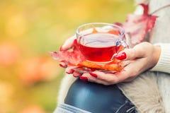 拿着手中热的红色茶的年轻可爱的妇女 放松在秋天自然用热的茶 库存图片