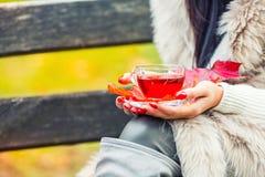拿着手中热的红色茶的年轻可爱的妇女 放松在秋天自然用热的茶 免版税库存图片