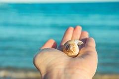 拿着手中美好的螺旋海壳的少妇 蓝色绿松石水背景金黄阳光 软的自然光 库存照片