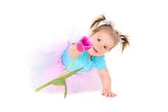 拿着手郁金香的芭蕾舞短裙的女婴 库存图片