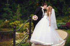 拿着新郎的肩膀走与他的新娘在公园附近 免版税库存图片