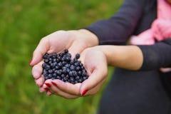 拿着新鲜的蓝莓的堆在绿色背景上的女性手 库存照片