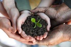 拿着新鲜的年幼植物的农夫家庭 免版税图库摄影