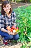 拿着新鲜蔬菜桶的美丽的亚裔妇女 库存图片