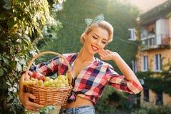拿着新鲜水果的篮子女孩的愉快的美丽的别针 库存图片