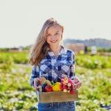 拿着有有机菜的妇女条板箱从农场 免版税库存图片