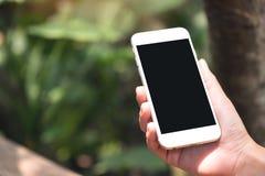 拿着有空白的黑桌面屏幕的手白色巧妙的电话在室外有迷离绿色自然背景 免版税库存图片