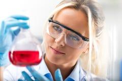 拿着有红色liqui的年轻可爱的女性科学家一个烧瓶 免版税图库摄影