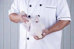 拿着未加工的鸡的厨师 免版税库存图片