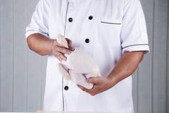 拿着未加工的鸡的厨师 库存照片