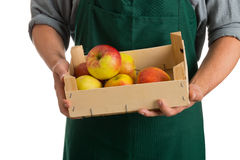 拿着条板箱用新鲜的被收获的苹果的农夫 库存照片