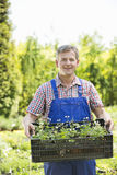 拿着条板箱盆的植物的微笑的人画象在庭院 免版税库存图片