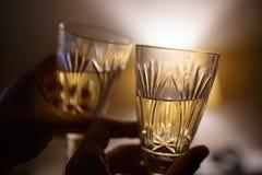 拿着杯酒的爱恋的夫妇 免版税库存图片