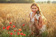 拿着杰克罗素在她的手上的年轻女人狗小狗,日落在背景中点燃了麦田,在前面的一些红色鸦片花 免版税库存图片