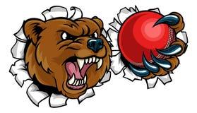 拿着板球的熊打破背景 库存例证