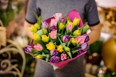 拿着桃红色,黄色和紫罗兰色郁金香的美妙的花束女孩 免版税库存照片