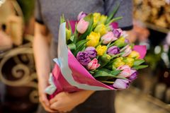 拿着桃红色,黄色和紫罗兰色郁金香的花束女孩 免版税库存照片